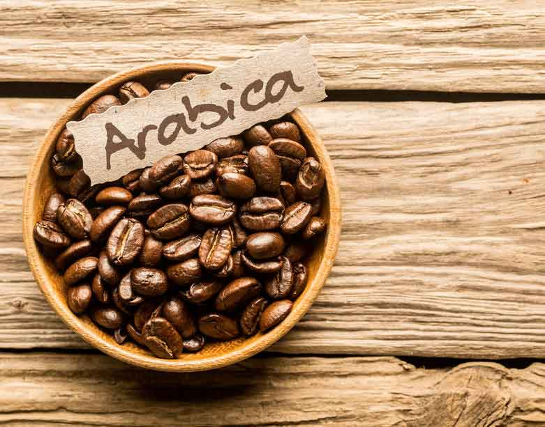 café en grains arabica
