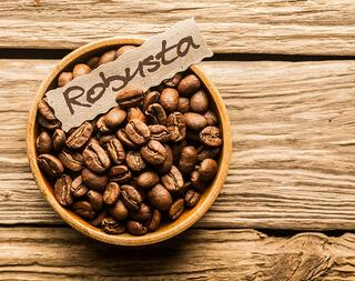 café en grains robusta